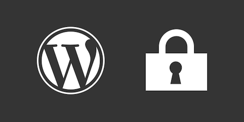 Remove publicly displayed version of WordPress is another anti-hack